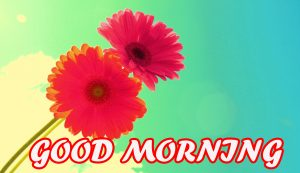 Gud Morning Wallpaper Pictures Photo Images Download