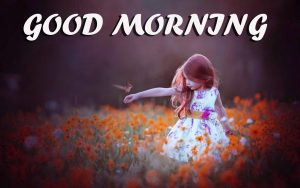 Gud Morning Images Photo Wallpaper Pictures Free HD