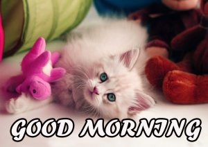 Gud Morning Wallpaper Images Pictures Photo HD Download For Facebook