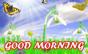 Gud Morning Pictures Photo Wallpaper Images Pics HD