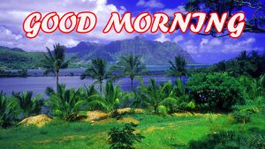 Gud Morning Images Wallpaper Photo Pictures Free HD