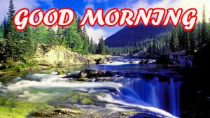 Gud Morning Wallpaper Photo Images Pictures HD Download
