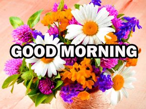 Gud Morning Pictures Images Wallpaper Photo HD