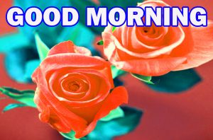 Gud Morning Photo Wallpaper Pictures Images HD For Whatsapp
