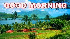Gud Morning Pictures Images Photo Wallpaper HD
