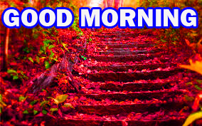 Gud Morning Pictures Images Photo Wallpaper Download For Facebook