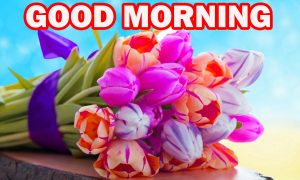 Gud Morning Pictures Images Photo Wallpaper HD For Whatsapp