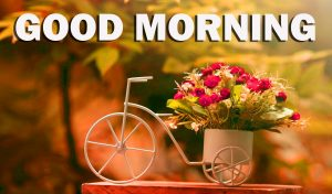 Gud Morning Images Photo Wallpaper HD Download