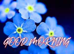 Gud Mrng Photo Images Pictures HD Download For Whatsapp