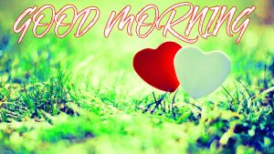 Gud Mrng Images Photo Wallpaper Pictures Download For Whatsapp