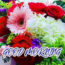 Gud Mrng Pictures Images Photo Wallpaper Download
