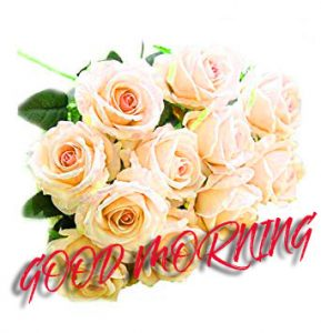 Gud Mrng Images Photo Wallpaper Pictures Download