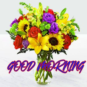 Gud Mrng Photo Images Wallpaper Photo For Whatsapp