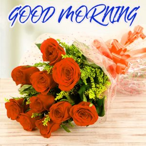 Gud Mrng Pictures Images Photo HD Download For Whatsapp