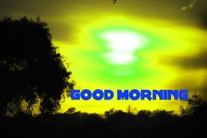 Latest Good Morning Wallpaper Photo Images HD Download