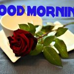 658+ Latest Good Morning Wallpaper Pictures HD for Best Friend