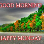 568+ Monday Good Morning Images Photo Wallpaper HD Download