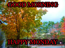 Monday Good Morning Pictures Images Photo Free HD