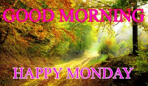 Monday Good Morning Photo Images Pictures Free HD