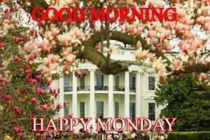 Monday Good Morning Pictures Photo Images Free HD