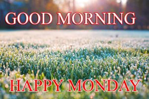 Monday Good Morning Pictures Photo Wallpaper Free HD