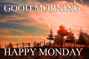 Monday Good Morning Pictures Photo Images HD Download