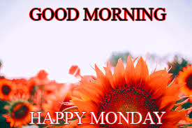Monday Good Morning Wallpaper Photo Pictures Download