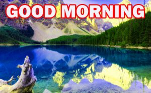 Nature Gud Morning Photo Images Wallpaper Download