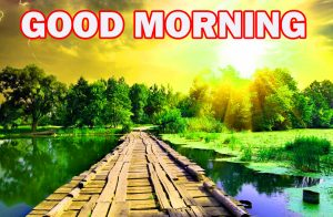 Nature Gud Morning Pictures Images Photo HD