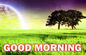 Nature Gud Morning Wallpaper Photo Pictures Download For Facebook