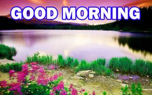 Nature Gud Morning Photo Images Pictures Download For Facebook