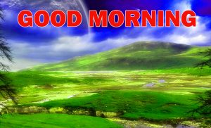 Nature Gud Morning Pictures Images Wallpaper Download