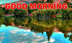 Nature Gud Morning Images Photo Wallpaper Download