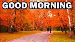 Nature Gud Morning Pictures Images Photo Download