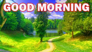 Nature Gud Morning Wallpaper Photo Images Download