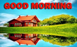 Nature Gud Morning Wallpaper Photo Images Pictures HD