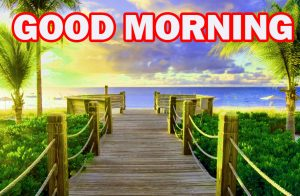 Nature Gud Morning Pictures Images Photo HD For Boyfriend
