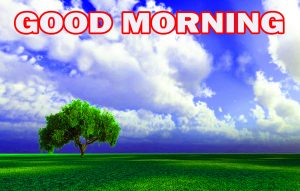 Nature Gud Morning Images Pictures Photo Download