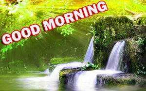 Nature Gud Morning Pics Images Photo HD Download