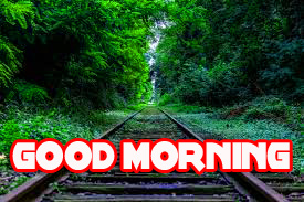 Good Morning Images Photo for Whatsaap HD Download