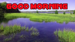 Nature Good Morning Images Pics Wallpaper Free Download
