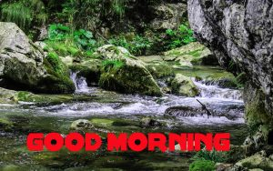 Nature Good Morning Images Wallpaper Pics Download