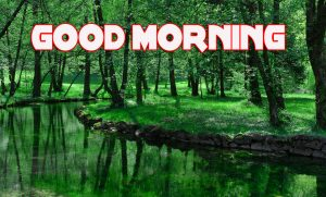 Good Morning Images Photo Pics HD Download With Nature