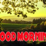 766+ Good Morning Images With Nature Download