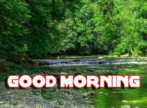 Nature Good Morning Images Photo Download HD