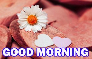 Special Good Morning Pictures Photo Images Free HD
