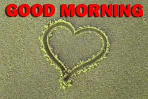 Special Good Morning Photo Images Pictures HD