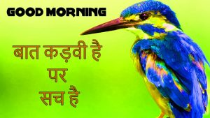 Suvichar Good Morning Pics Images Pictures Download