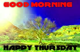 Thursday Good Morning Pics Images Wallpaper Download For Facebook