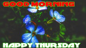 Thursday Good Morning Photo Images Pictures HD